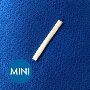 cortical_struts-MINI
